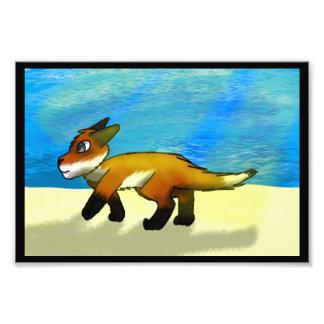 Impression Photo Fox par le côté d'océan