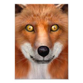 Impression Photo Fox rouge