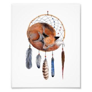 Impression Photo Fox rouge dormant sur la copie d'art de
