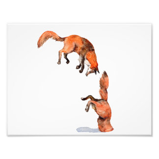 Impression Photo Fox rouge sautant