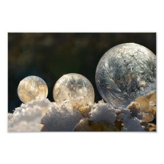 Impression Photo Hiver gelé Paperprint de cristal de glace de