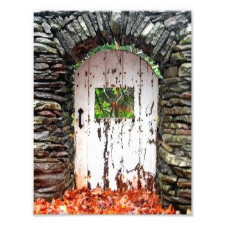 Impression Photo La porte de forêt