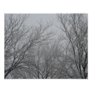 Impression Photo Le pays des merveilles d'hiver