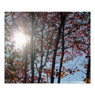 Impression Photo Lever de soleil