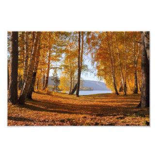 Impression Photo Paysage d'automne