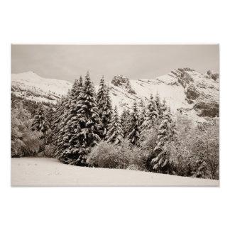 Impression Photo Paysage d'hiver