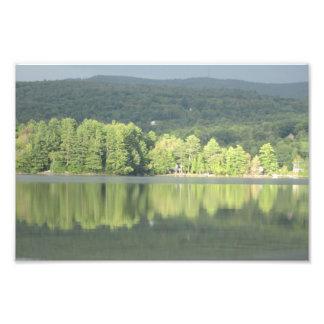 Impression Photo Réflexion verte d'arbres de lac