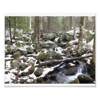 Impression Photo Ruisseau de bavardage