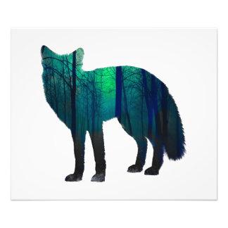 Impression Photo Silhouette de Fox - renard de forêt - art de