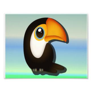 Impression Photo Toucan
