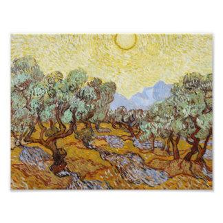 Impression Photo Vincent van Gogh - oliviers