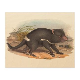 Impression Sur Bois Animaux de l'Australie le diable tasmanien