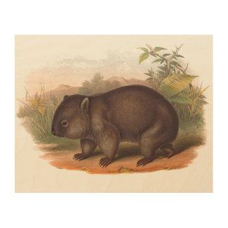 Impression Sur Bois Animaux de l'Australie le wombat