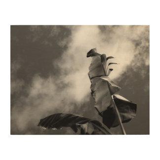Impression Sur Bois Bananier noir et blanc