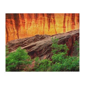 Impression Sur Bois Canyon et feuillage au néon | Utah d'Escalante