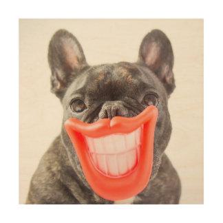 Impression Sur Bois Chien de sourire des images | A de Getty