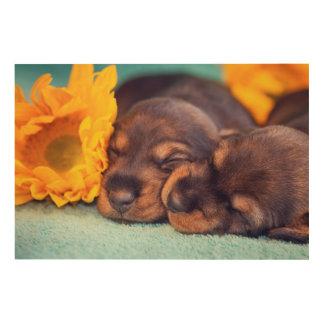 Impression Sur Bois Chiots adorables de sommeil Doxen