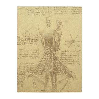 Impression Sur Bois Colonne vertébrale d'anatomie humaine par Leonardo
