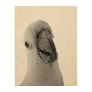 Impression Sur Bois Coup d'oeil animal de photographie de cacatoès