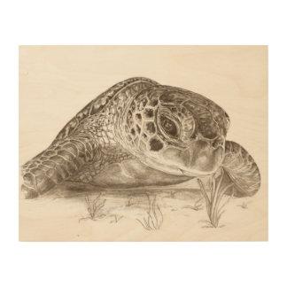 Impression Sur Bois Dessin de tortue de mer verte