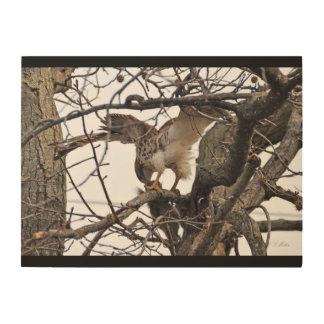 Impression Sur Bois faucon de Rouge-queue sur le bois