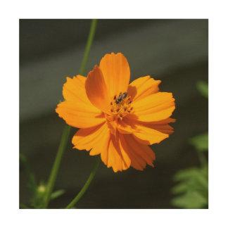 Impression Sur Bois Fleurissez avec la petite abeille, copie en bois