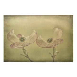 Impression Sur Bois Le plan rapproché du cornouiller rose fleurit |