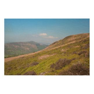 Impression Sur Bois Le secteur maximal de Derbyshire