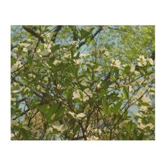 Impression Sur Bois Les branches du cornouiller se développe des