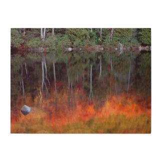 Impression Sur Bois Mt. Parc national d'Acadia de l'Île déserte |,