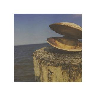 Impression Sur Bois Palourde par la mer