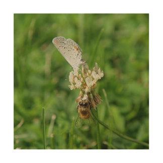 Impression Sur Bois Papillon et abeille, copie en bois