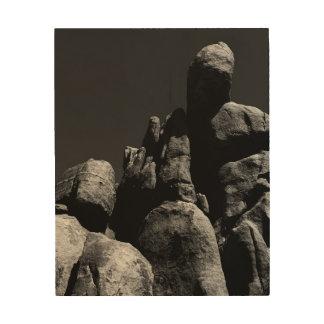 Impression Sur Bois Roches au parc national d'arbre de Joshua