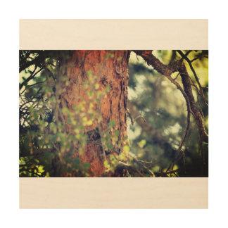 Impression Sur Bois Vieux pin