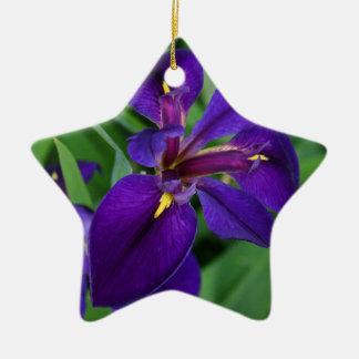 Impressions d'améthyste ornement étoile en céramique