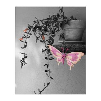 Impressions En Acrylique De couleur d'éclaboussure de papillon toujours