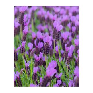 Impressions En Acrylique Fleur espagnole pourpre de lavande