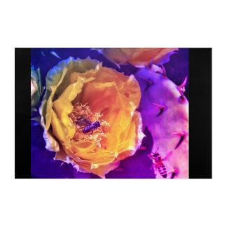 Impressions En Acrylique Fleurs, abeilles et Catus.