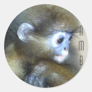 Initiales brunes mignonnes NMB de singe aucunes Sticker Rond