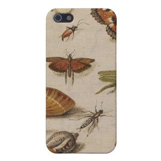Insectes, coquilles, cas de papillons iPhone 5 case