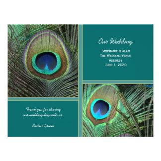 Insectes turquoises de programme de mariage de prospectus 21,6 cm x 24,94 cm