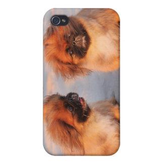 iPhone 4/4S Case Chiens mignons de Pekingese