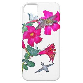 iPhone 5 Case La faune d'oiseau de colibri fleurit l'animal