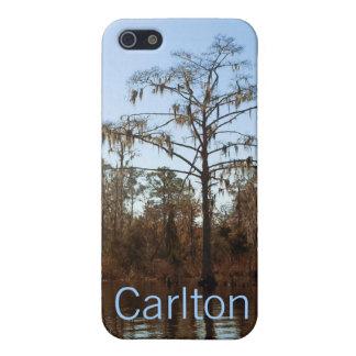 iPhone 5 Case Mousse espagnole et arbres personnalisés
