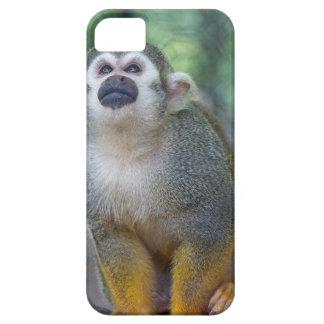 iPhone 5 Case Singe