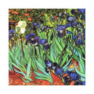 Iris par la copie de toile de beaux-arts de Van Toiles