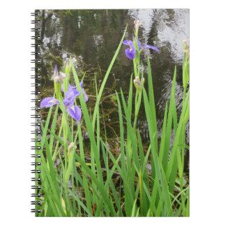Iris sur le carnet de photo de bord de l'eau (80