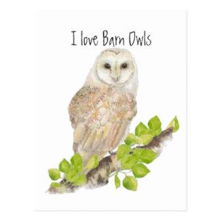 J'aime des hiboux de grange - oiseau carte postale