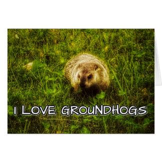 J'aime la carte de voeux de groundhogs