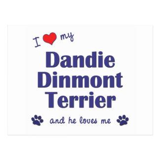 J'aime mon Dandie Dinmont Terrier (le chien Carte Postale